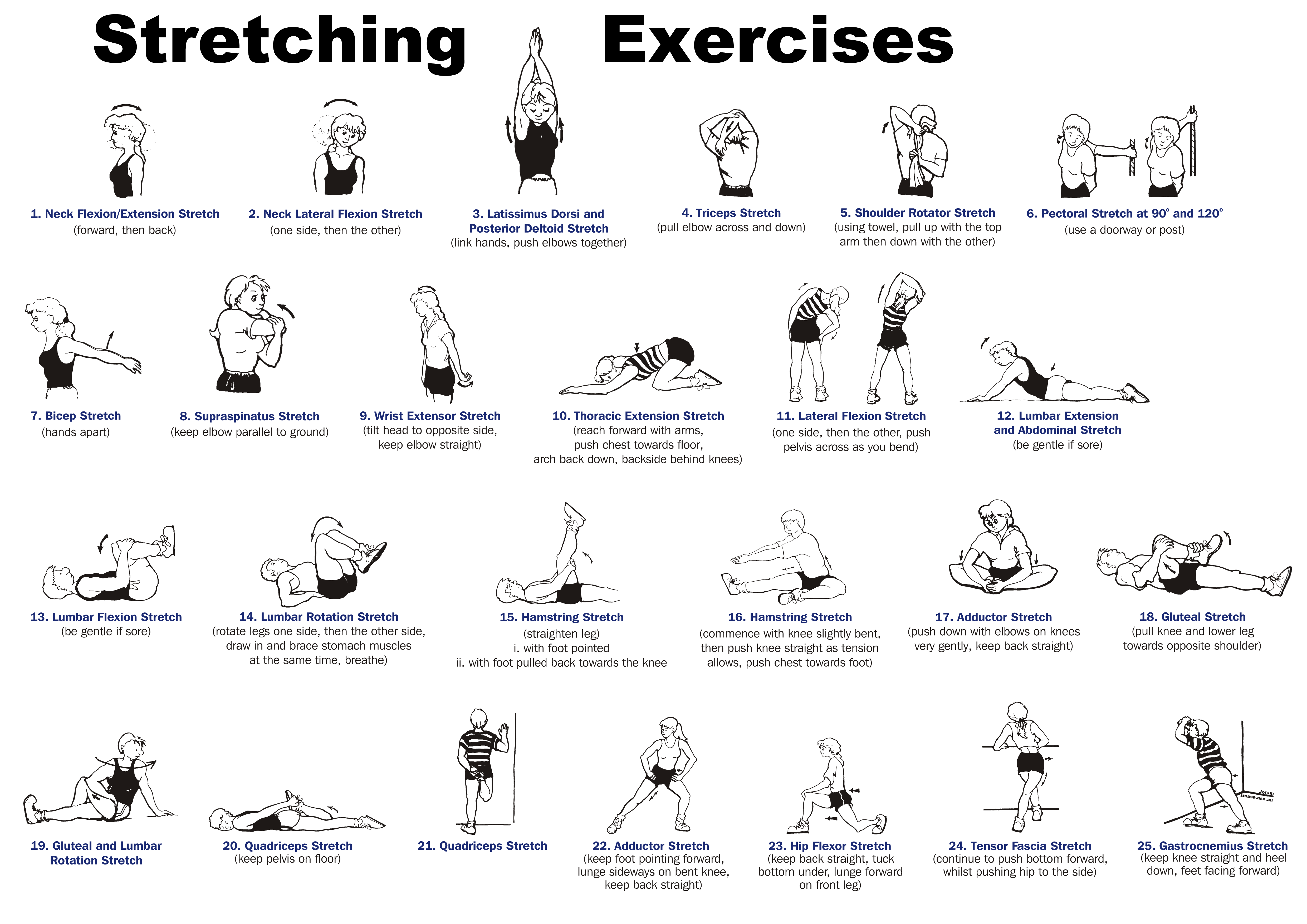 stretching exercises for osteoporosis