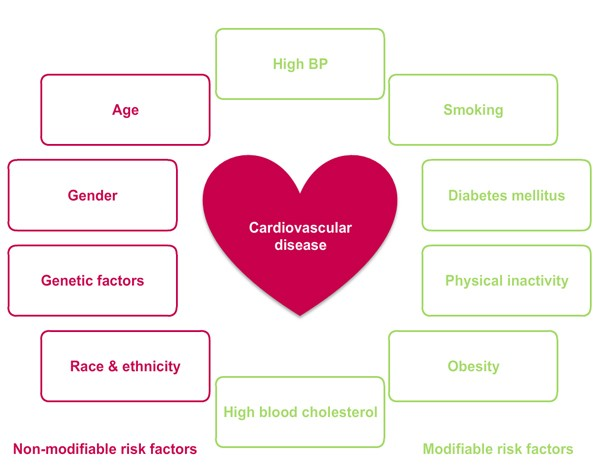 risk_factors_for_cardiovascular_disease